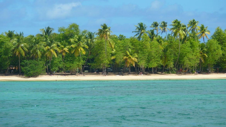 La plage des Salines, Sainte Anne- Martinique