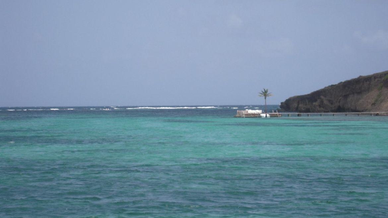 Îlet Thierry du François, Martinique