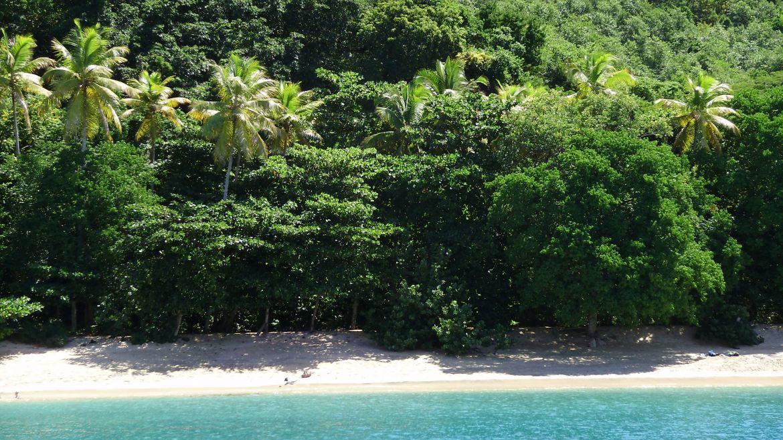 Plage de Bequia, Iles Grenadines