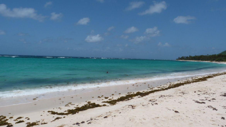 Capesterre beach, Marie Galante