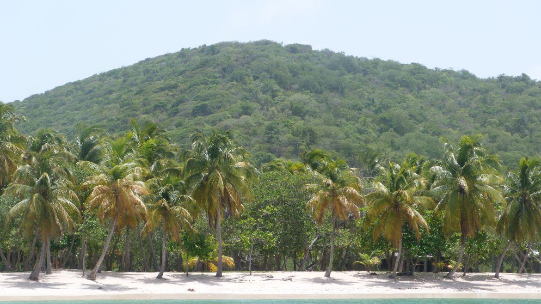 Plage de Salt Whistle Bay à Mayreau, Grenadines