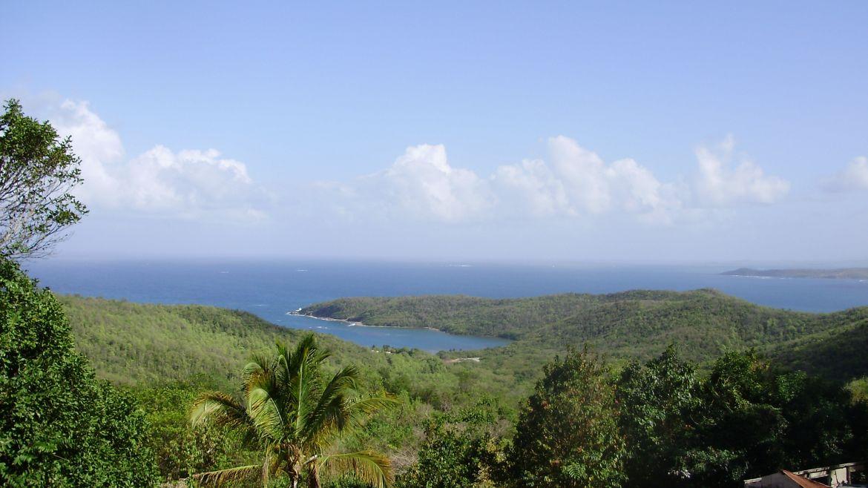 Presqu'île de la Caravelle, Tartane, Martinique