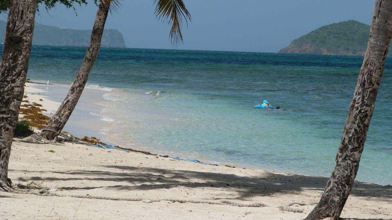 Plage de Petit Bateau aux Tobago Cays - Grenadines