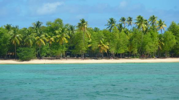 The beach at Salines, Sainte-Anne, Martinique