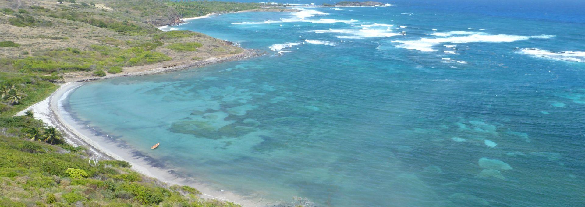 The windward coast of Martinique