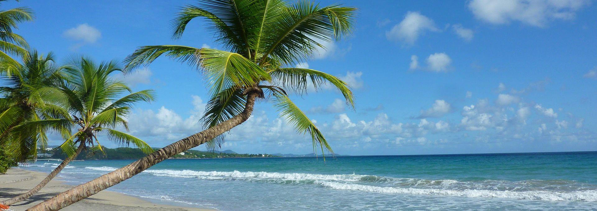 Plage du Diamant en Martinique